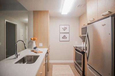 Rental Under Agreement: 101 Beverly Street #12H