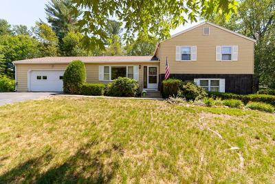 Hudson Single Family Home For Sale: 2 Karen Circle