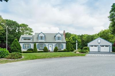 Falmouth Single Family Home New: 31 Rose Meadow Ln