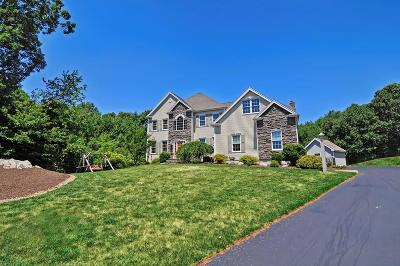 Wrentham Single Family Home Contingent: 82 Whipple Brook