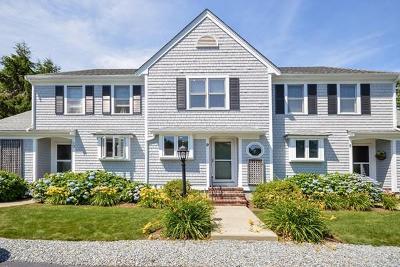 Falmouth Condo/Townhouse New: 51 Carlson Lane #9