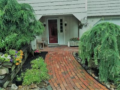 Andover Single Family Home For Sale: 13 Partridge Hill Road