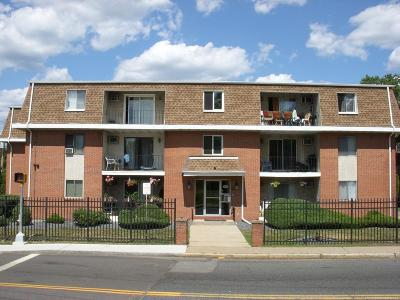 Marlborough Condo/Townhouse New: 155 Pleasant St. #3B
