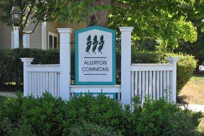 Braintree Condo/Townhouse For Sale: 264 Allerton Commons Lane #264