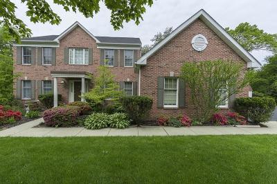 Marlborough Single Family Home New: 92 Robert Rd