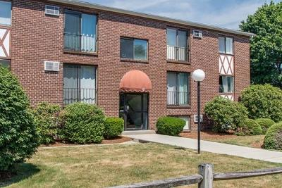 Franklin  Condo/Townhouse Under Agreement: 139 King St #306