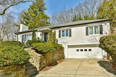 Newton Single Family Home Contingent: 61 Lakeview Avenue