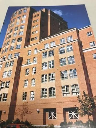 Cambridge Rental New: 931 Massachusetts Ave #701