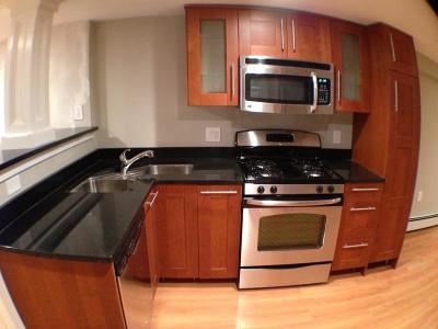 Brookline Rental New: 674 Washington #A