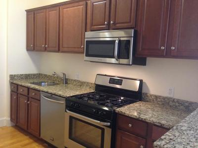 Brookline Rental New: 674 Washington #2