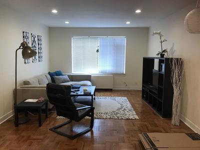 Brookline Rental New: 563 Washington #6