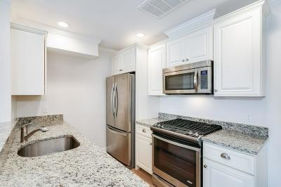 Boston Condo/Townhouse New: 463 Rutherford Avenue #202