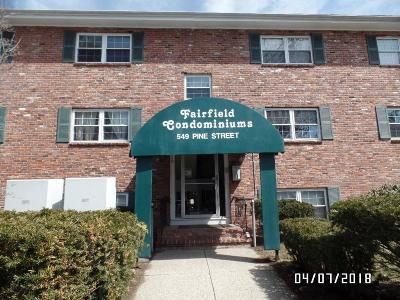 Lowell Condo/Townhouse New: 549 Pine St #14