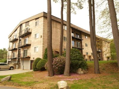 Billerica, Chelmsford, Lowell Condo/Townhouse For Sale: 181 Littleton Rd. #341 -Bld