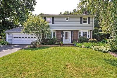 Taunton Single Family Home New: 41 Power Street