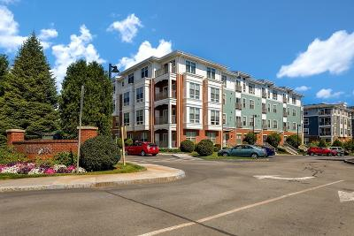 Watertown Condo/Townhouse Under Agreement: 3 Repton Circle #3101