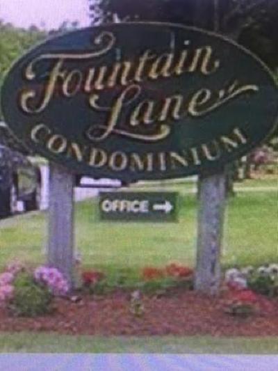 Weymouth Condo/Townhouse New: 95 Fountain Lane #12