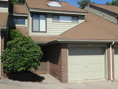 Stoughton Condo/Townhouse New: 94 Cottonwood Dr #94