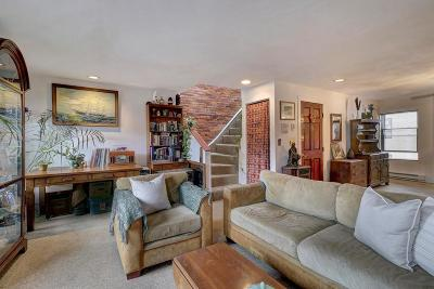 Boston Condo/Townhouse New: 63 Webster Street #3