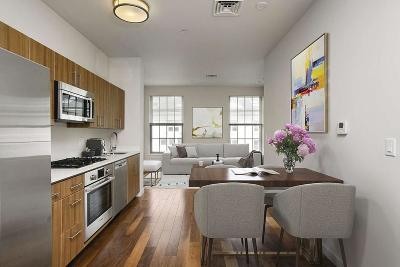Boston Condo/Townhouse New: 45 First Ave #402