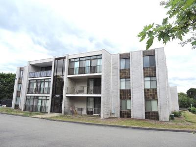 Condo/Townhouse New: 27 Skyline Dr #11
