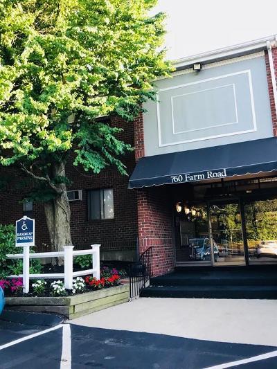 Acton, Boxborough, Carlisle, Concord, Framingham, Hudson, Lincoln, Marlborough, Maynard, Natick, Stow, Sudbury, Wayland, Weston Condo/Townhouse For Sale: 760 Farm Rd #228