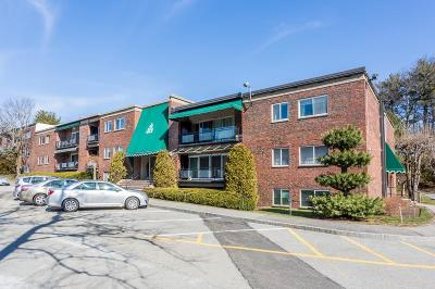 Needham Rental For Rent: 1212 Greendale Ave #303