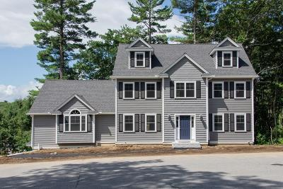 Billerica Single Family Home For Sale: 54 Highview St