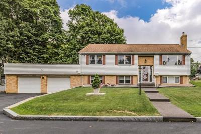 Arlington MA Single Family Home Under Agreement: $895,000