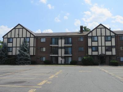 Randolph Condo/Townhouse Under Agreement: 59 Highland Glen Dr #325