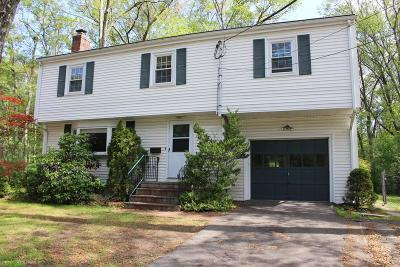 Natick Single Family Home For Sale: 161 Mill St