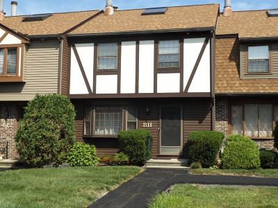 Billerica, Chelmsford, Lowell Condo/Townhouse Contingent: B11 Scotty Hollow Dr #B11