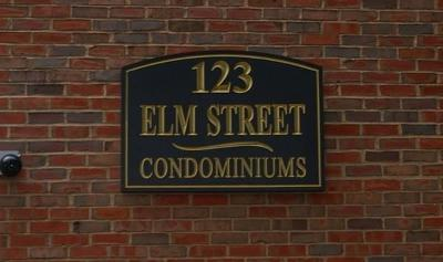 Quincy Condo/Townhouse For Sale: 123 Elm St #D8