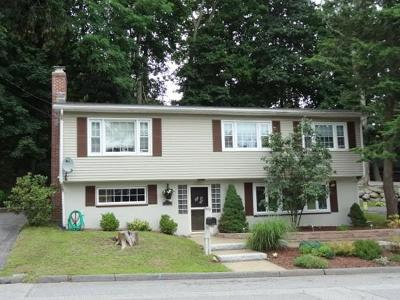 Lowell Single Family Home For Sale: 310 Parkview Ave