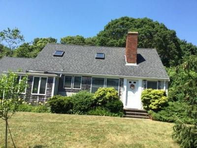 Falmouth Single Family Home For Sale: 46 Terry Lou Ave