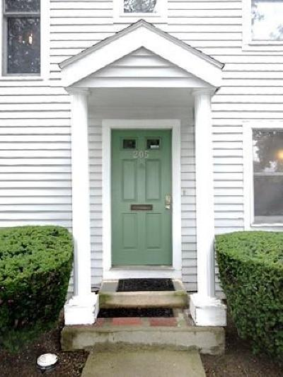 Malden Condo/Townhouse Under Agreement: 205 Washington Street #205
