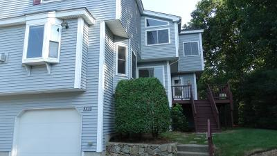 Bellingham Condo/Townhouse For Sale: 3103 Maple Brook Rd #3103