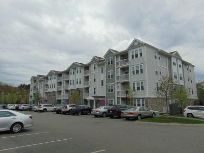 Braintree Condo/Townhouse For Sale: 426 John Mahar Hwy #405