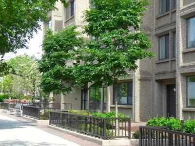 Brookline MA Condo/Townhouse Under Agreement: $775,000