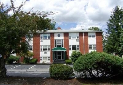 Andover Condo/Townhouse Under Agreement: C2 Colonial Drive #5