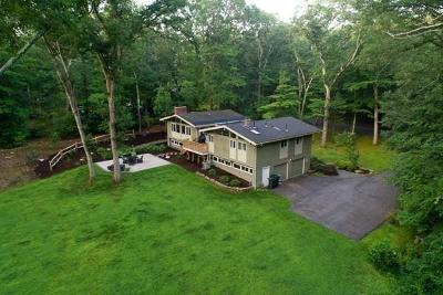 Natick Single Family Home Contingent: 13 Indian Ridge Road