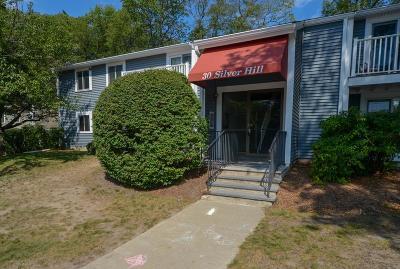 Natick Condo/Townhouse For Sale: 30 Silver Hill Ln #1