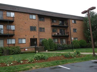 chelmsford Rental For Rent: 181 Littleton Road Bldg 8 #220