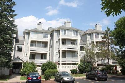 Quincy Condo/Townhouse New: 200 Falls Blvd #B303