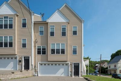 Quincy Condo/Townhouse New: 3 Prospect Hill St #3