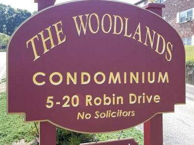 Marlborough Condo/Townhouse For Sale: 20 Robin Drive #9
