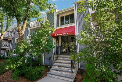 Natick Condo/Townhouse New: 4 Post Oak Ln #22