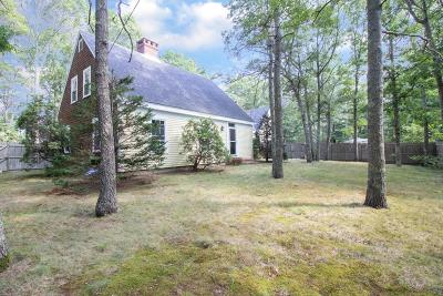Falmouth Single Family Home New: 970 Sandwich Rd