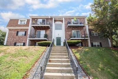 Plymouth Condo/Townhouse Under Agreement: 8 Chapel Hill Dr #6