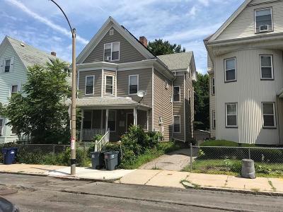 Multi Family Home New: 12 Stanton St